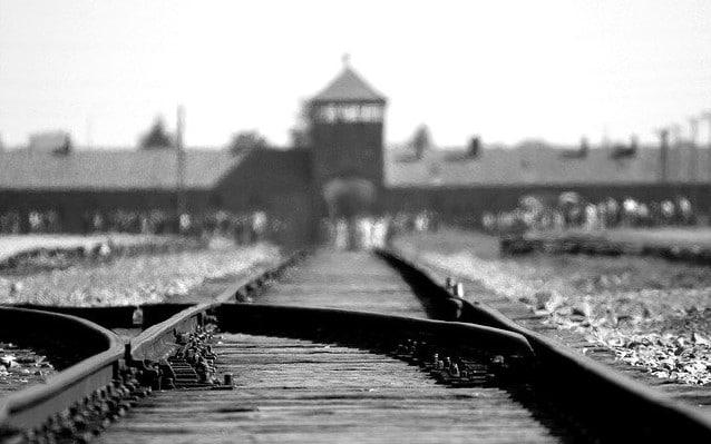 """""""Im Zeichen des schwarzen Winkels"""": Geschichte eines Auschwitz-Überlebenden"""