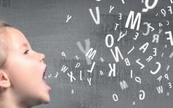 Spracherwerb – Sprachwandel – Sprachverfall? Die deutsche Sprache in Schule und Gesellschaft heute